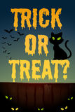 Halloween theme with black cat Stock Photography