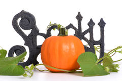 Halloween Theme Stock Photography