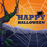 Halloween theme with spider web Royalty Free Stock Images