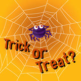 Halloween theme with spider web Stock Photography