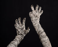 Halloween theme: terrible old mummy hands on a black background Stock Images