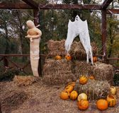 Halloween themed composition consisting of orange pumpkins, mummy and hay. royalty free stock photos