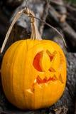 Halloween themes. Autumn halloween jack-o-lantern on autumn wooden background. Autumn halloween jack-o-lantern on autumn wooden background royalty free stock images