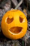 Halloween themes. Autumn halloween jack-o-lantern on autumn wooden background. Autumn halloween jack-o-lantern on autumn wooden background royalty free stock photography