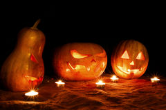 Halloween three pumpkins jack lamp in the darkness among the can stock photo