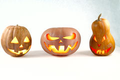 Halloween three pumpkins jack-o'-lantern on a white background l stock image