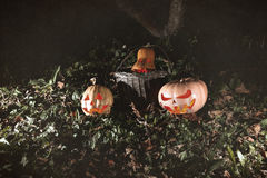 Halloween three pumpkins in leaves and grass in the dark, scary Stock Photo