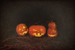 Halloween three pumpkins scary funny and creepy in the woods on stock photo