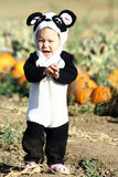 Halloween Toddler Stock Image