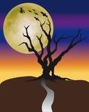 Halloween Tree Stock Image
