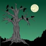 Halloween tree Royalty Free Stock Photo