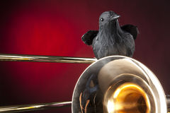 Halloween Trombone and Crow Red Stock Photography