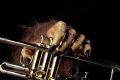Halloween Trumpet Monster Hand Royalty Free Stock Photos