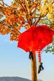 Halloween Umbrella Decoration. In Montenegro royalty free stock images