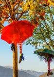 Halloween umbrella Decoration. In Montenegro stock images