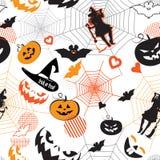 Halloween-Urlaubspartytext Festlichkeits- oder Tricktitelmuster lizenzfreie stockfotografie