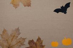 Halloween-vakantieachtergrond, leeg document voor tekst, pompoen, esdoornbladeren, en knuppel Mening van hierboven met exemplaarr Stock Afbeelding