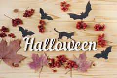 Halloween-vakantieachtergrond, tekst, kat, bessen en knuppels Mening van hierboven Stock Foto's