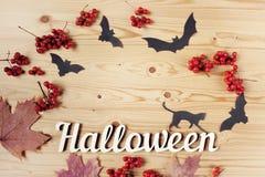 Halloween-vakantieachtergrond, tekst, kat, bessen en knuppels Mening van hierboven met exemplaarruimte Stock Foto