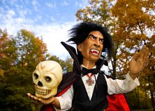 Halloween Vampire and Skull-2. Halloween doll dressed up as of a vampire holding a skull Stock Image