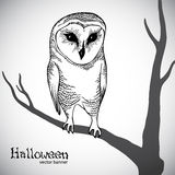 Halloween vector banner Royalty Free Stock Images