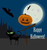 Halloween vector icon and cat Stock Image
