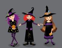 Halloween vector illustration of three young witches isolated. Halloween vector illustration of three young witches isolated on grey background. Cute cartoon Royalty Free Stock Photos