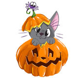 Halloween vector sticker with kitten, spider and pumpkin Stock Images