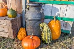 Halloween-vertoning Stock Afbeeldingen
