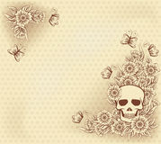 Halloween vintage background with skull Stock Photo