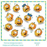 Halloween visual puzzle - Find two identical Royalty Free Stock Images