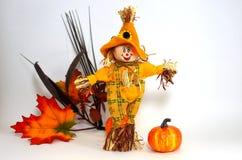 Halloween-Vogelscheuche Stockfotografie