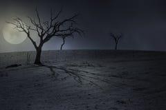 Halloween-volle maanachtergrond Royalty-vrije Stock Foto