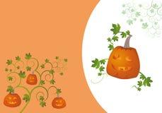 halloween wakacje Obraz Royalty Free