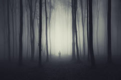 Halloween-Wald mit Mann Lizenzfreie Stockfotos