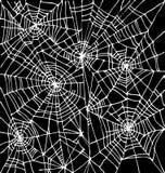 Halloween web background CCCI-Bk Stock Photos