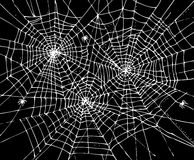 Halloween Web Background CCCVII Stock Image