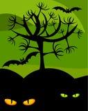Halloween Wildness Royalty Free Stock Photo
