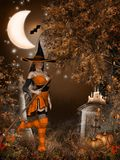 Halloween Witch Royalty Free Stock Images