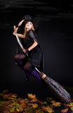 Halloween witch. On a broom Stock Images