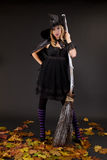 Halloween witch. With a broom Royalty Free Stock Photography