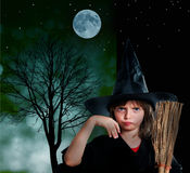 Halloween witch. On a night background Stock Image
