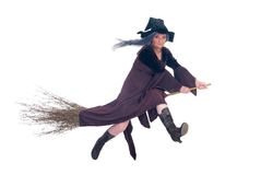 Halloween witch Stock Photo