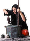 Halloween Witch Brewing Up a Spell. A witch adds a dead rat to her Halloween witches brew Stock Photo