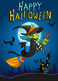 Halloween witch with broomstick  on night background. Vector Halloween party invitation template. Halloween elements witch Stock Images