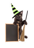 Halloween Witch Cat With Blank Chalkboard Royalty Free Stock Photography