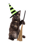 Halloween Witch Cat With Broom. Cute little black kitten wearing a Halloween witch hat and sitting up holding a broom Stock Photography