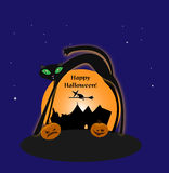 Halloween witch with cat and pumpkins Royalty Free Stock Photos