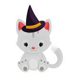 Halloween witch cat  on white background Stock Photography