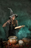 Halloween witch cauldron. Halloween witch on smoky green and purple background Stock Photos